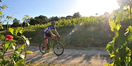 Photographie de Bacchus on Bikes en Calonge